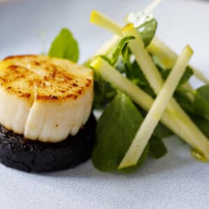Scallops with black pudding and apple and pea shoots salad